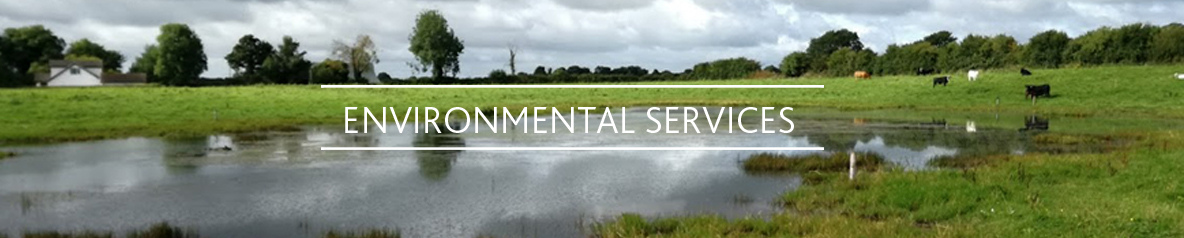 Boylan Engineering and Environmental Consultancy